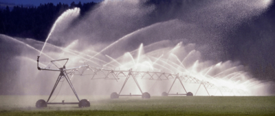 Water used for irrigation