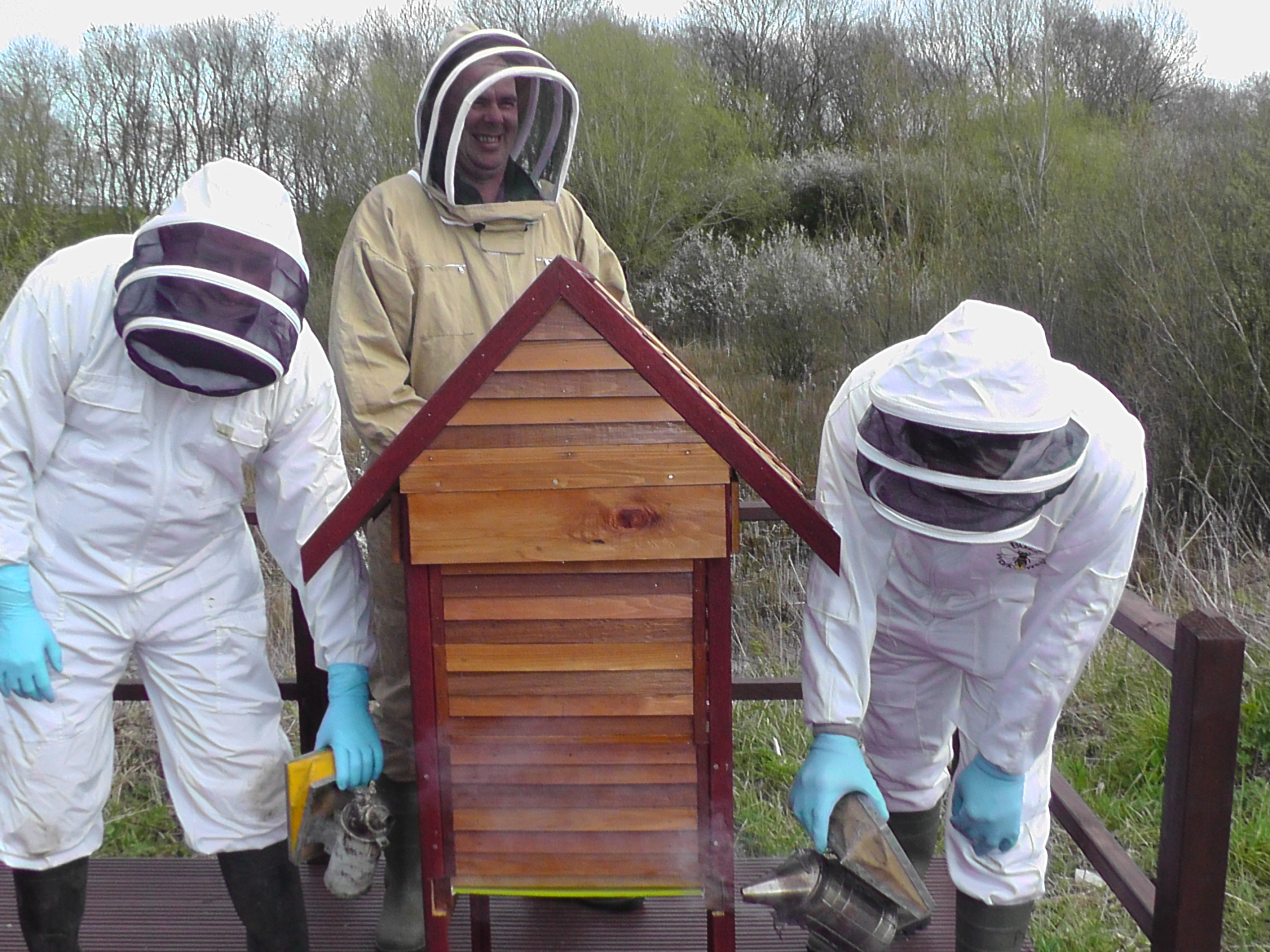 Bee hives on the Cranfield campus