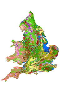 Soilscapes showing different soil types in England and Wales © Cranfield University http://www.landis.org.uk/soilscapes/