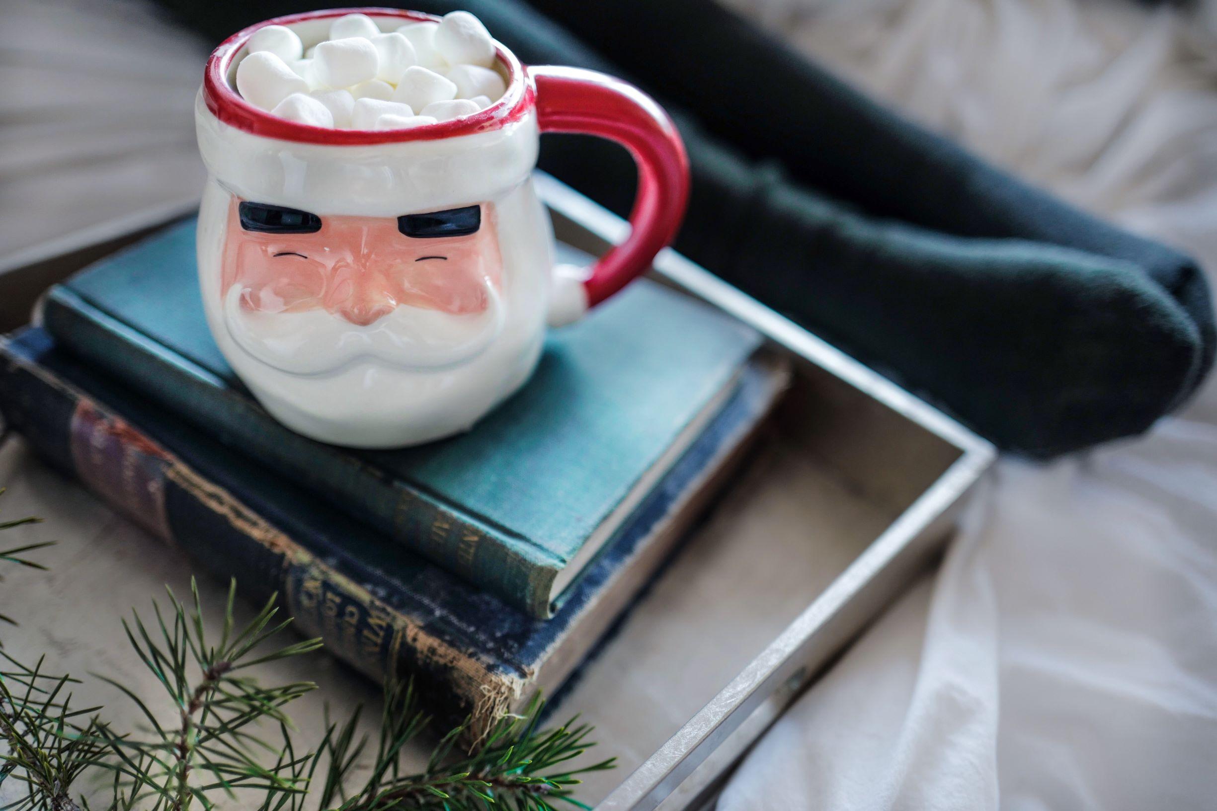 Christmas mug and books