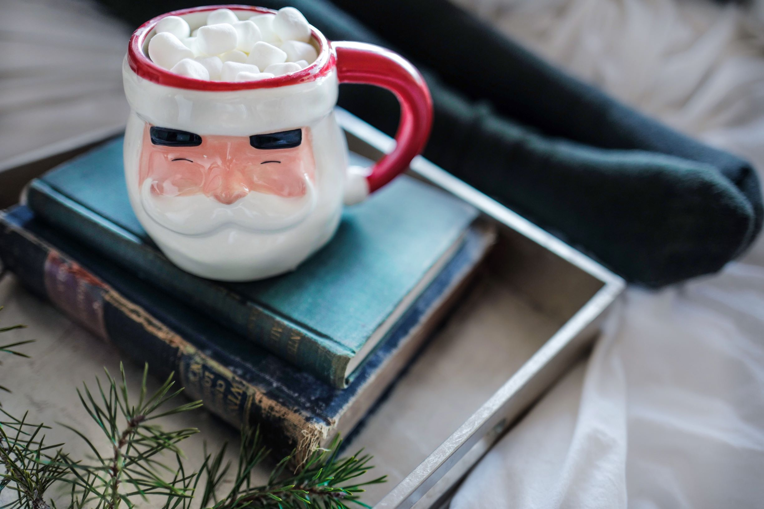 Christmas mug and books