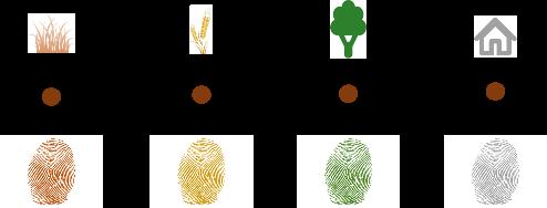 sediment fingerprint